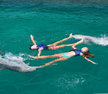 nadar com dois golfinhos